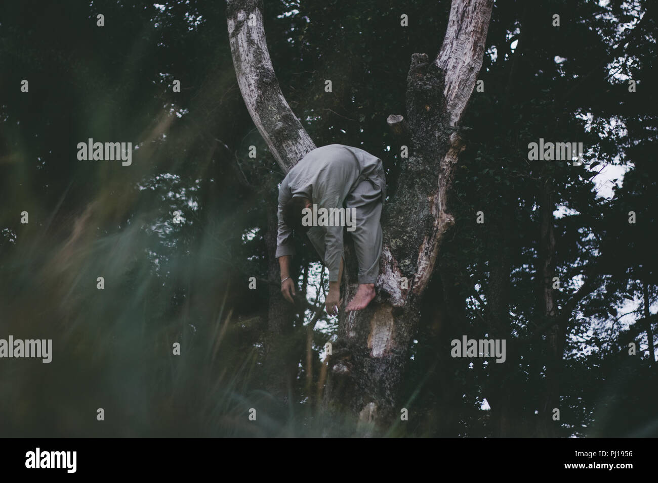 Man moving in nature forest Stock Photo