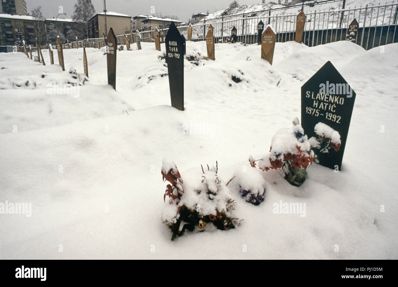 4th March 1993 Flowers, smothered with snow, mark the grave of a seventeen year-old boy in a corner of the Lion Cemetery in Sarajevo, just below the Kosevo Hospital. - Stock Image
