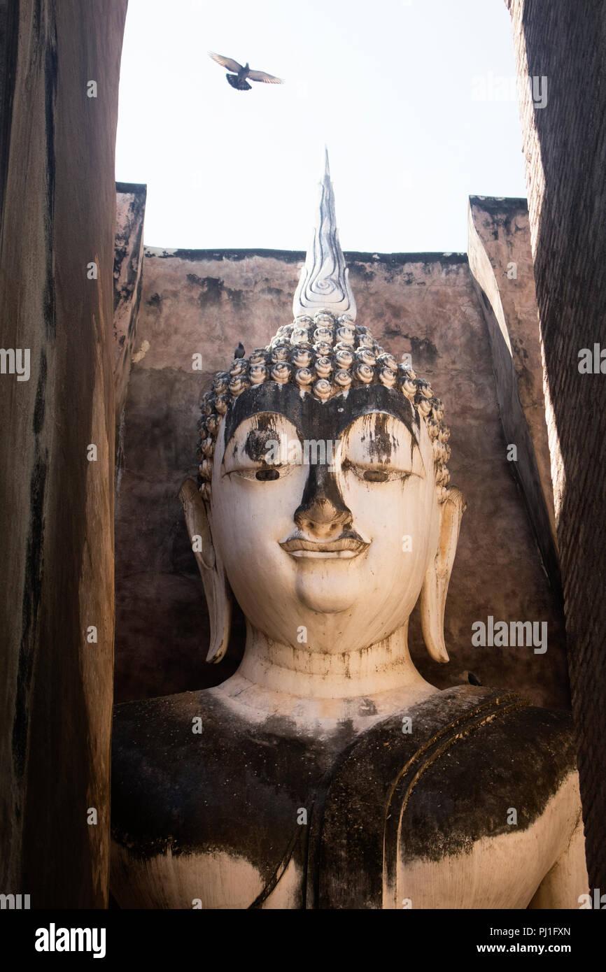 Bird flying above buddha statue in Wat Si Chum. Sukhothai Historical Park, Thailand - Stock Image