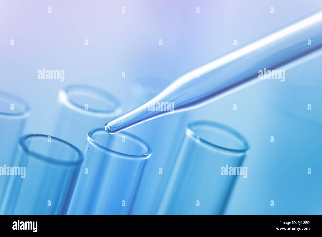 Medical science laboratory glassware, scientific equipment for researching in medicine and chemistry Stock Photo