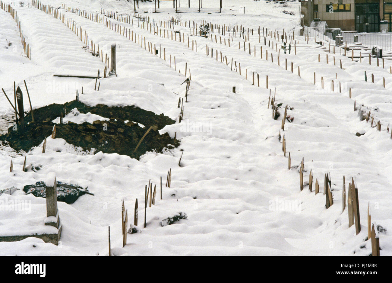4th March 1993 A view of part of the Lion Cemetery in Sarajevo, just below the Kosevo Hospital: grave-diggers' shovels stand embedded in freshly dug earth among dozens of regimented wooden grave-markers in the snow. They bear the names of Muslim victims of the Siege of Sarajevo. - Stock Image