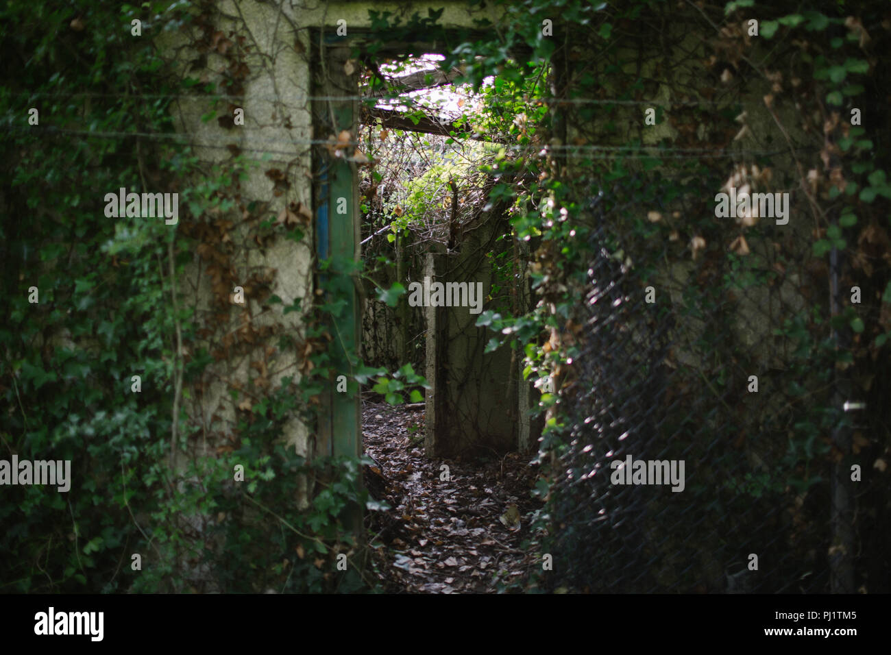 Derelict building that was once part of the terminal of the Aust Ferry at Old Passage which crossed the Severn before the Severn Bridge was built - Stock Image