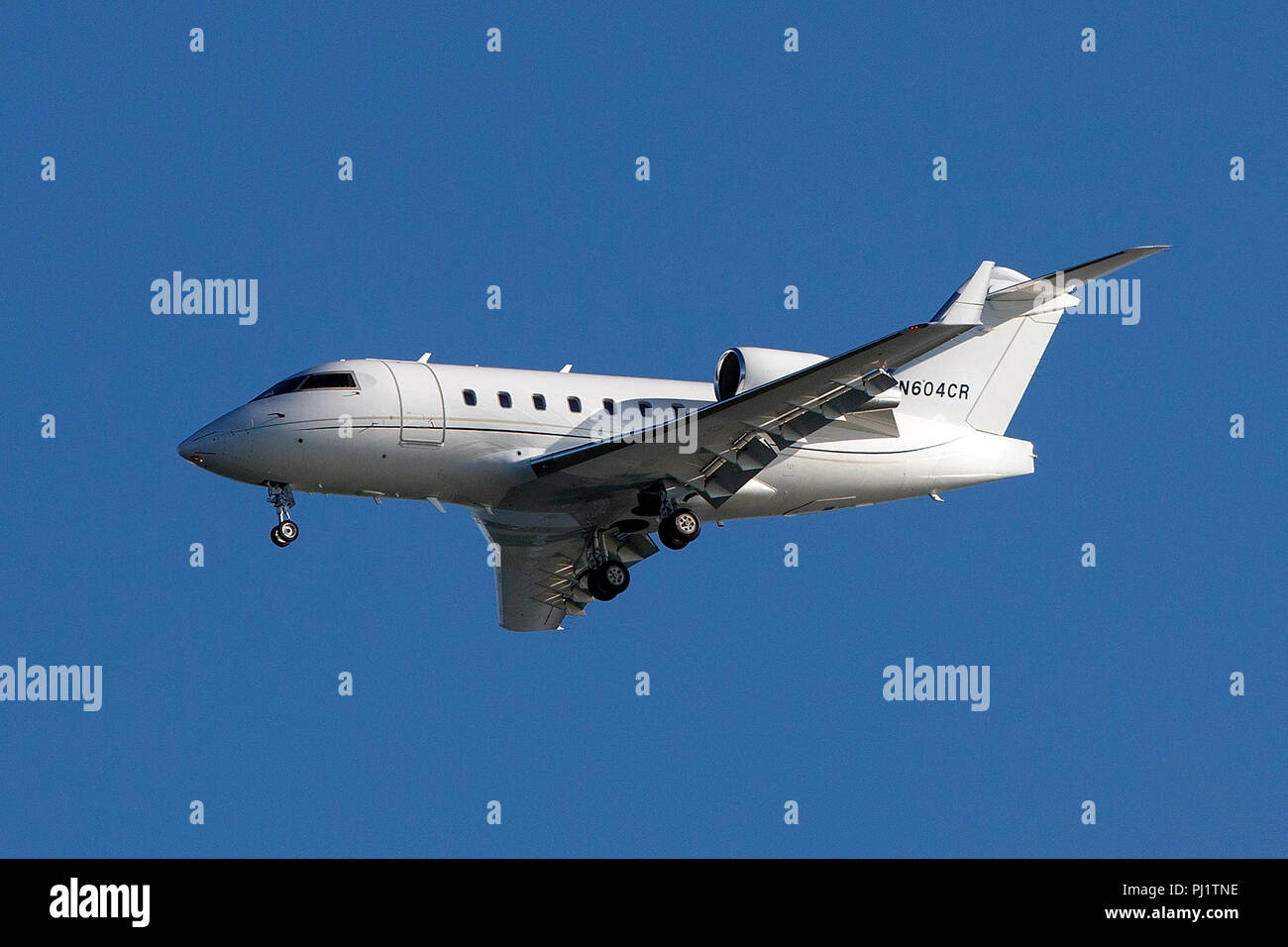 Bombardier CL-600-2B16 (N604CR) on approach to San Francisco International Airport (SFO), San Francisco, California, United States of America - Stock Image