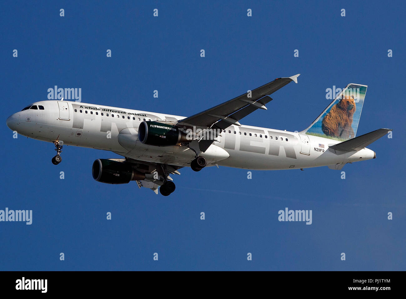 Airbus A320-214 (N211FR) operated by Frontier Airlines with the Grizwald the Grizzly Bear Livery on approach to San Francisco International Airport (SFO), San Francisco, California, United States of America - Stock Image