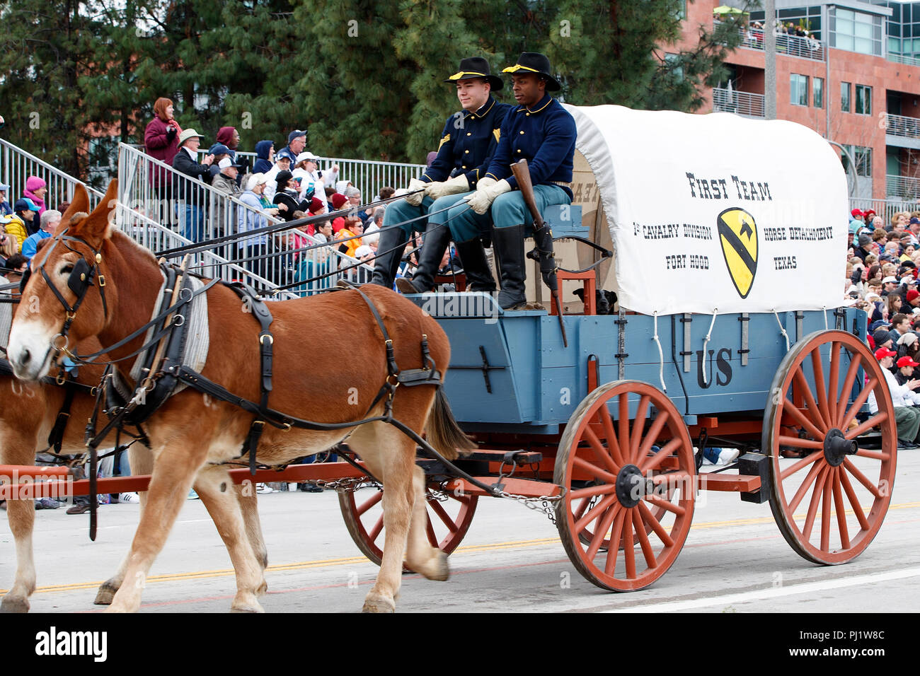Horse drawn wagon of the United States Army, 1st Cavalry, from Fort Hood, Texas, 2017 Tournament of Roses Parade, Rose Parade, Pasadena, California, United States of America - Stock Image