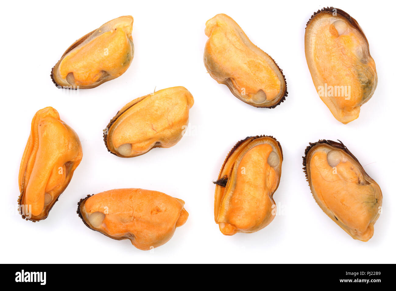 mussels isolated on white background. Top view. Flat lay. - Stock Image