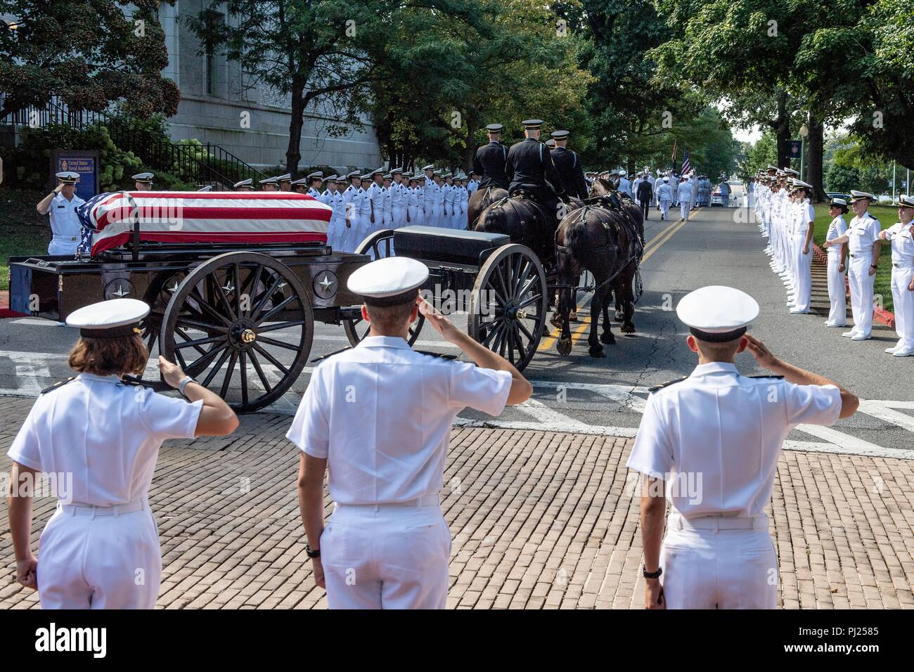 Midshipmen salute as the flag draped casket of Sen. John McCain as a horse-drawn caisson processes to the United States Naval Academy Cemetery for his burial service September 2, 2018 in Annapolis, Maryland. John S. McCain, III graduated from the United States Naval Academy in 1958. He was a pilot in the United States Navy, a prisoner of war in Vietnam, a Congressmen and Senator and twice presidential candidate. He received numerous awards, including the Silver Star, Legion of Merit, Purple Heart, and Distinguished Flying Cross. - Stock Image