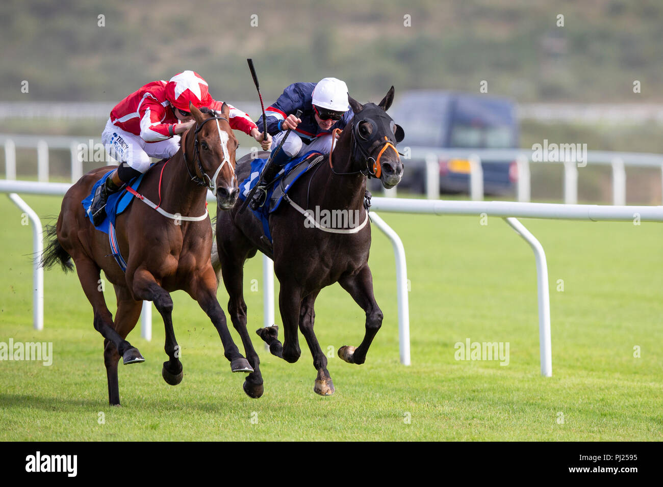 Racehorse Sir Plato ridden by jockey Finley Marsh (nearside) on the way to winning a race at Ffos Las racecourse - Stock Image