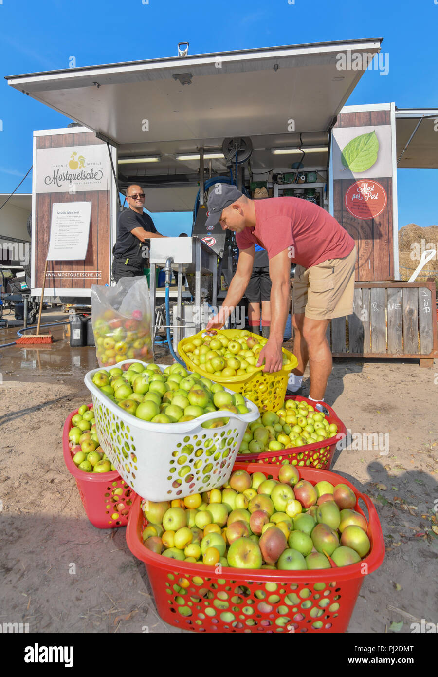 04.09.2018, Brandenburg, Frankfurt (Oder): Many apples in baskets stand in front of Mario Flach's mobile fruit juice crusher from Berlin. The mobile apple juice press tours Berlin and Brandenburg. From a quantity of 100 kilograms of apples, everyone can have their own apple juice pressed here. After pressing, the juice is heated to 80 degrees Celsius and filled into three or five litre tubular bags. From 100 kilograms you can squeeze about 50 to 60 litres of juice. Photo: Patrick Pleul/dpa-Zentralbild/ZB - Stock Image