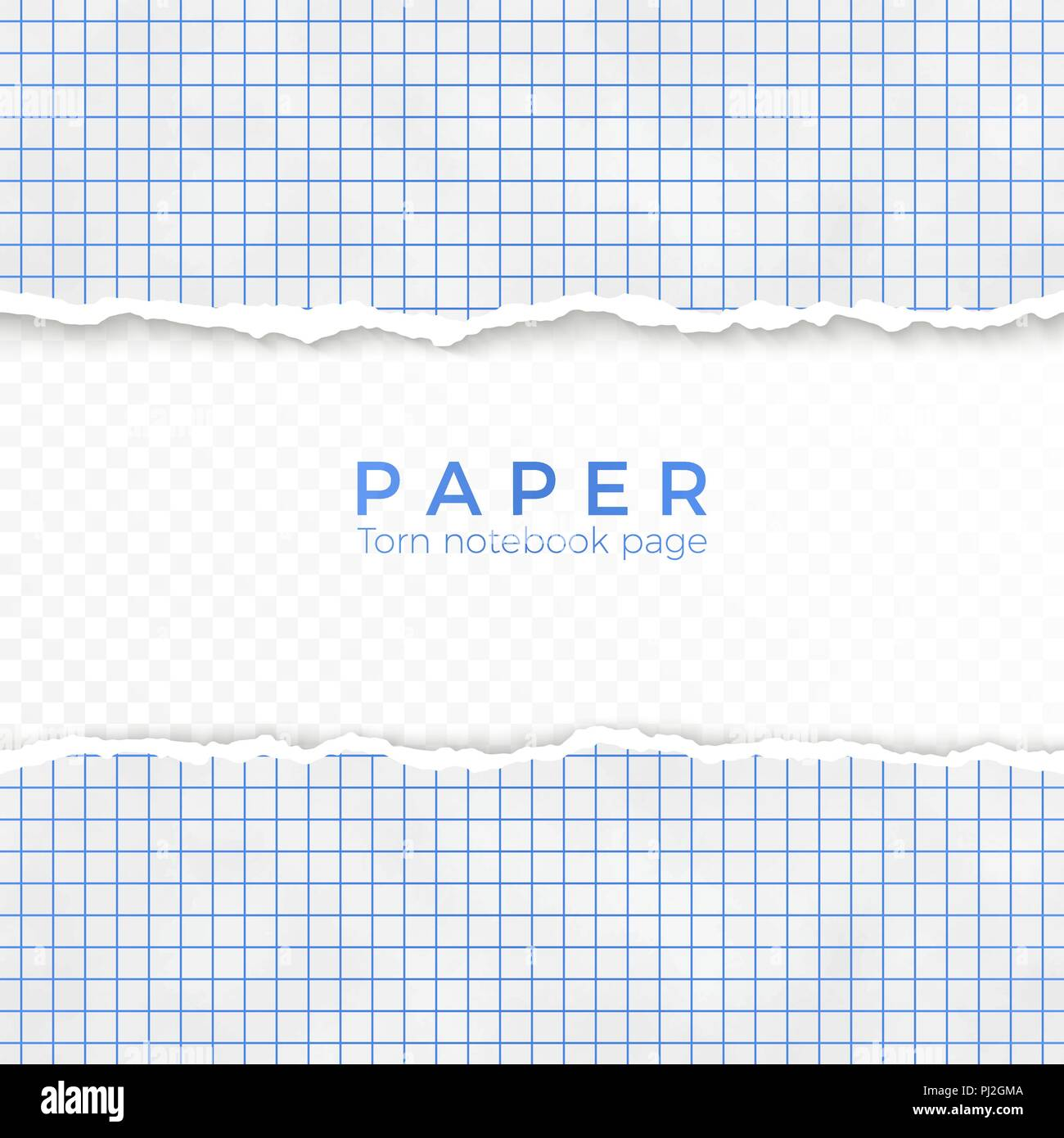 torn edge of blue squared paper. torn piece of squared paper from