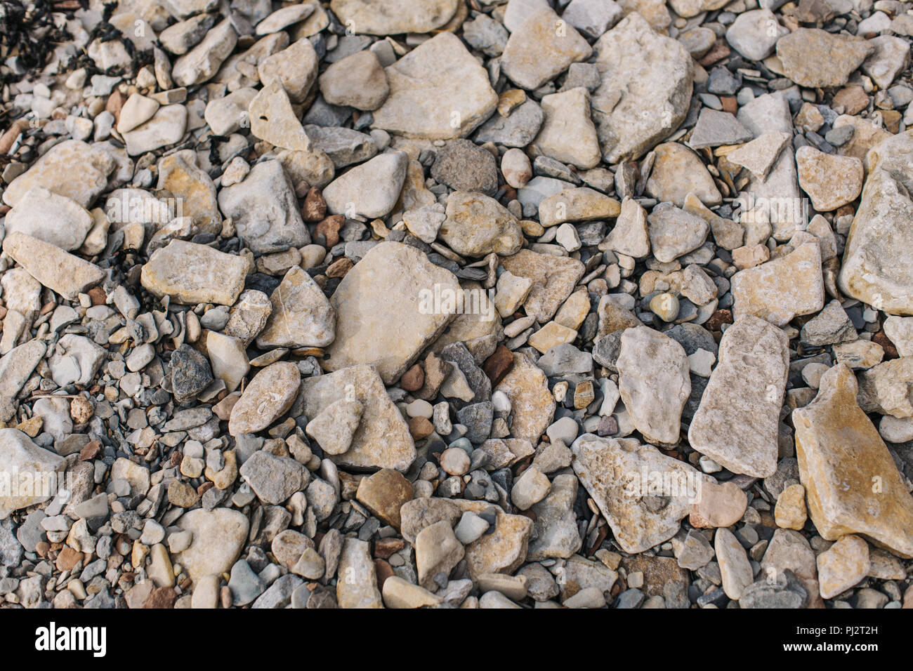 Looking down at the surface of a rocky beach with many rocks, stones and pebbles of different shapes and sizes in muted brown and orange colours - Stock Image