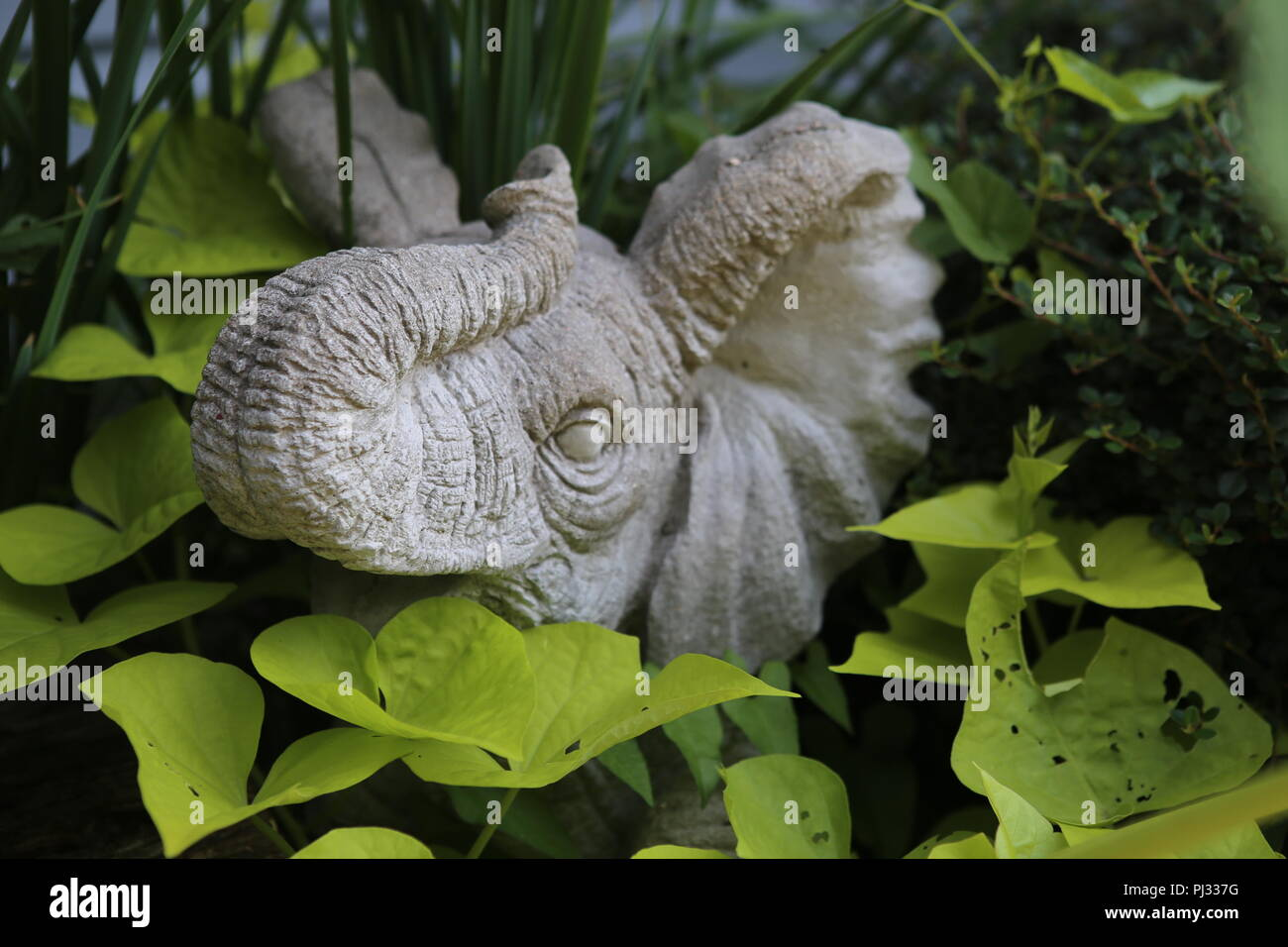 stone statue of an elephant in outdoor garden - Stock Image
