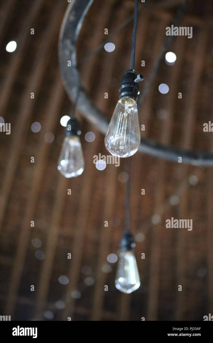 old vintage Edison style light bulbs in old farm barn - Stock Image