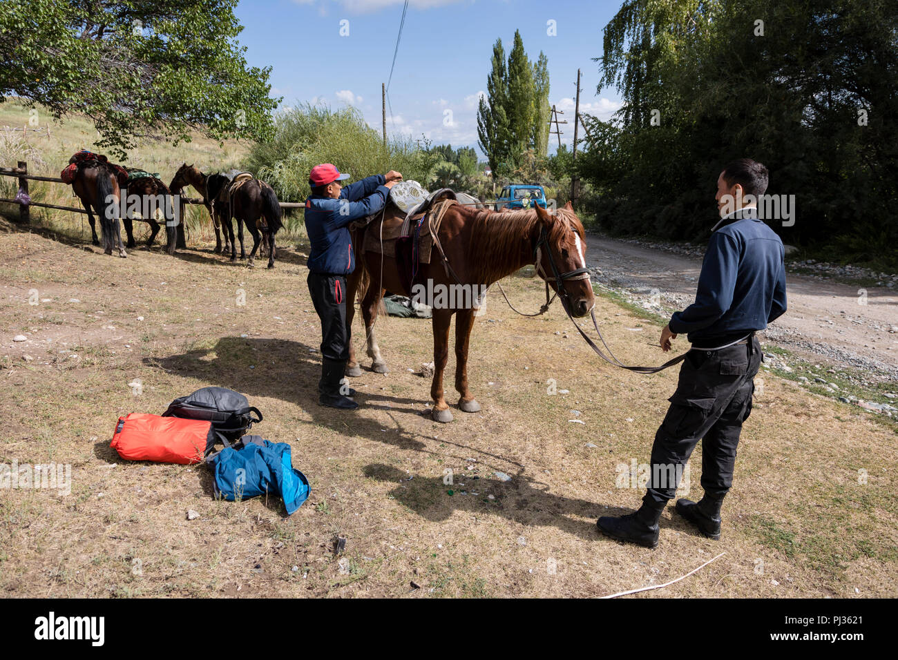 Altyn-Arashan, Kyrgyzstan, August 13 2018: Saddling the horses for a horse trek from Ak-Suu to Altyn-Arashan near Karakol - Stock Image