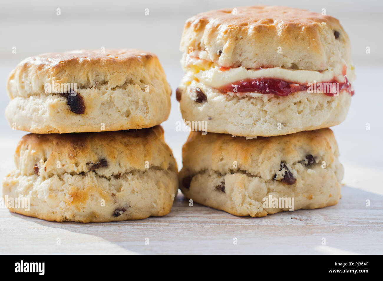Close up of four scones with jam and cream, on the plate, on the white wooden table, selective focus copy space for text Stock Photo