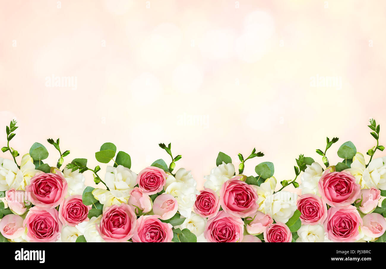 Eucalyptus Leaves Freesia And Pink Rose Flowers In A Border