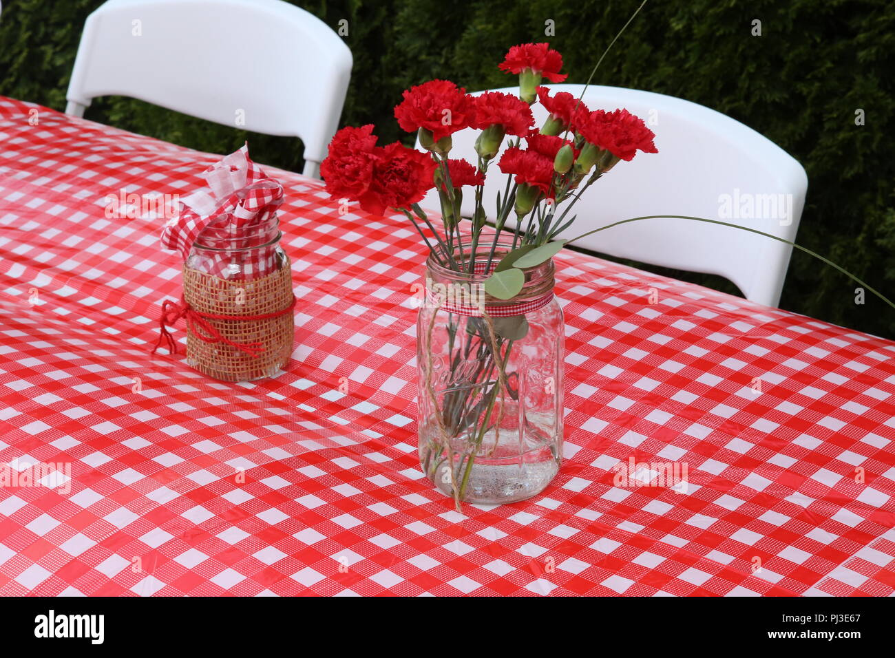 red flowers on red white tablecloth - Stock Image