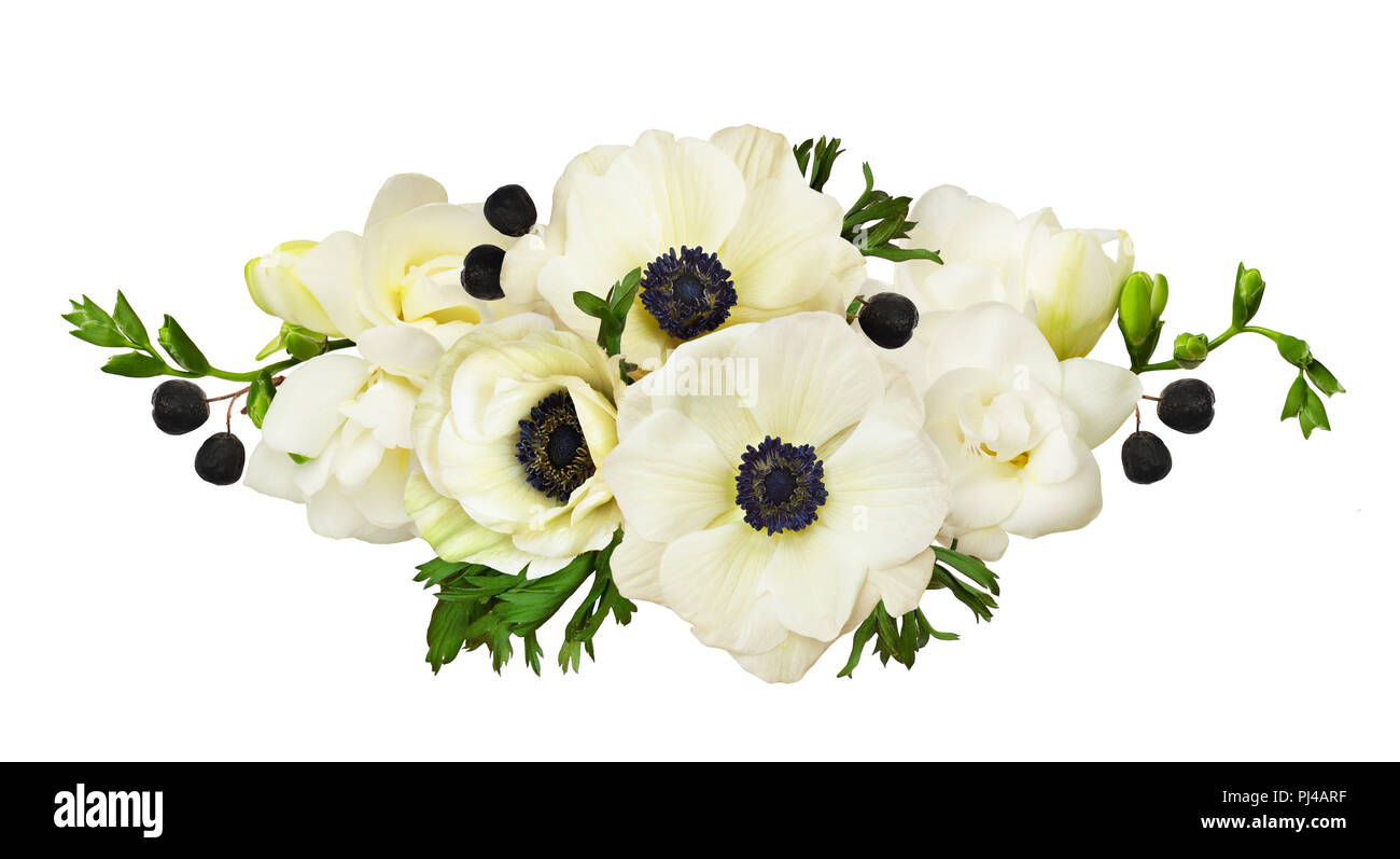 White Anemones And Freesia Flowers In A Line Arrangement Isolated On