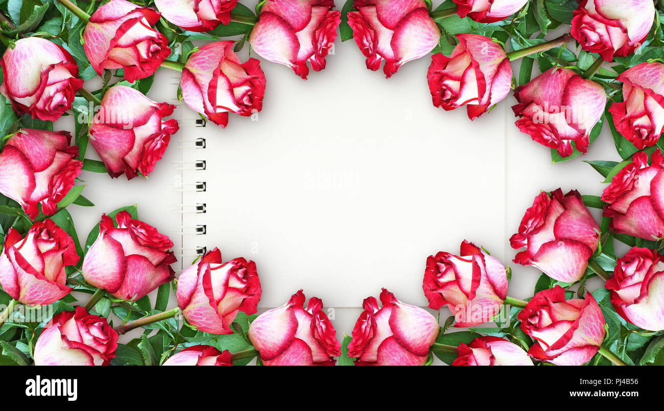 Floral horizontal frame from red and white rose flowers with ...