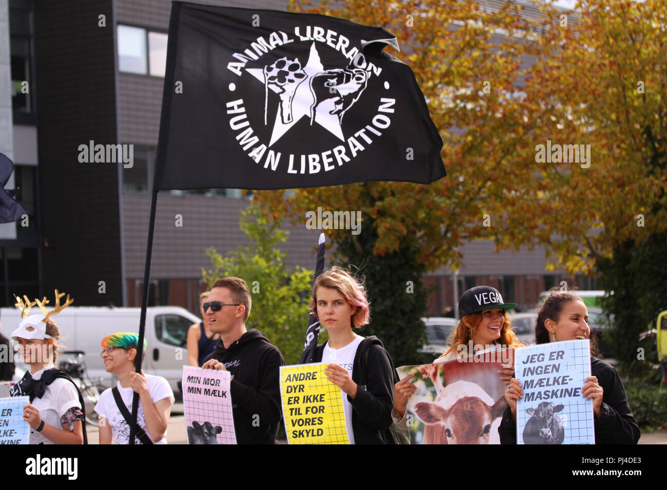 Copenhagen, Denmark - September 1, 2018: Vegan and vegetarians for animal liberation protest at a demonstration against cruelty towards animals and ea - Stock Image