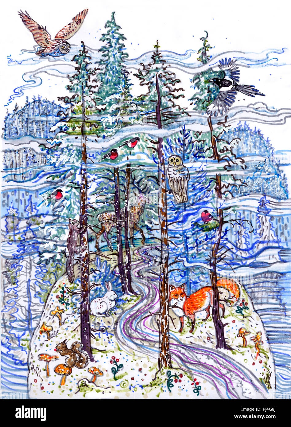Magic winter forest. Spruce, fir tree, snow, animals : owl, magpie, bullfinch, squirrel, deer, fox, hare. Northern fairy tale. Hand drawn illustration. For children, Christmas, New Year greeting card. - Stock Image