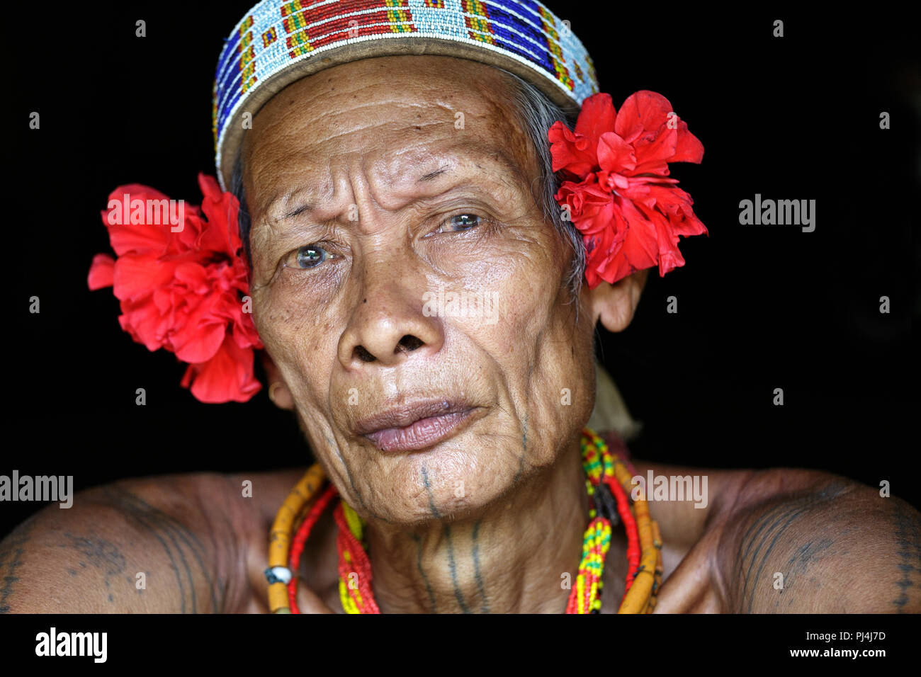 Portrait of old shaman of Mentawai people wearing red flowers on his head and tatoos, indigenous tribe, Siberut, sumatra, Indonesia - Stock Image