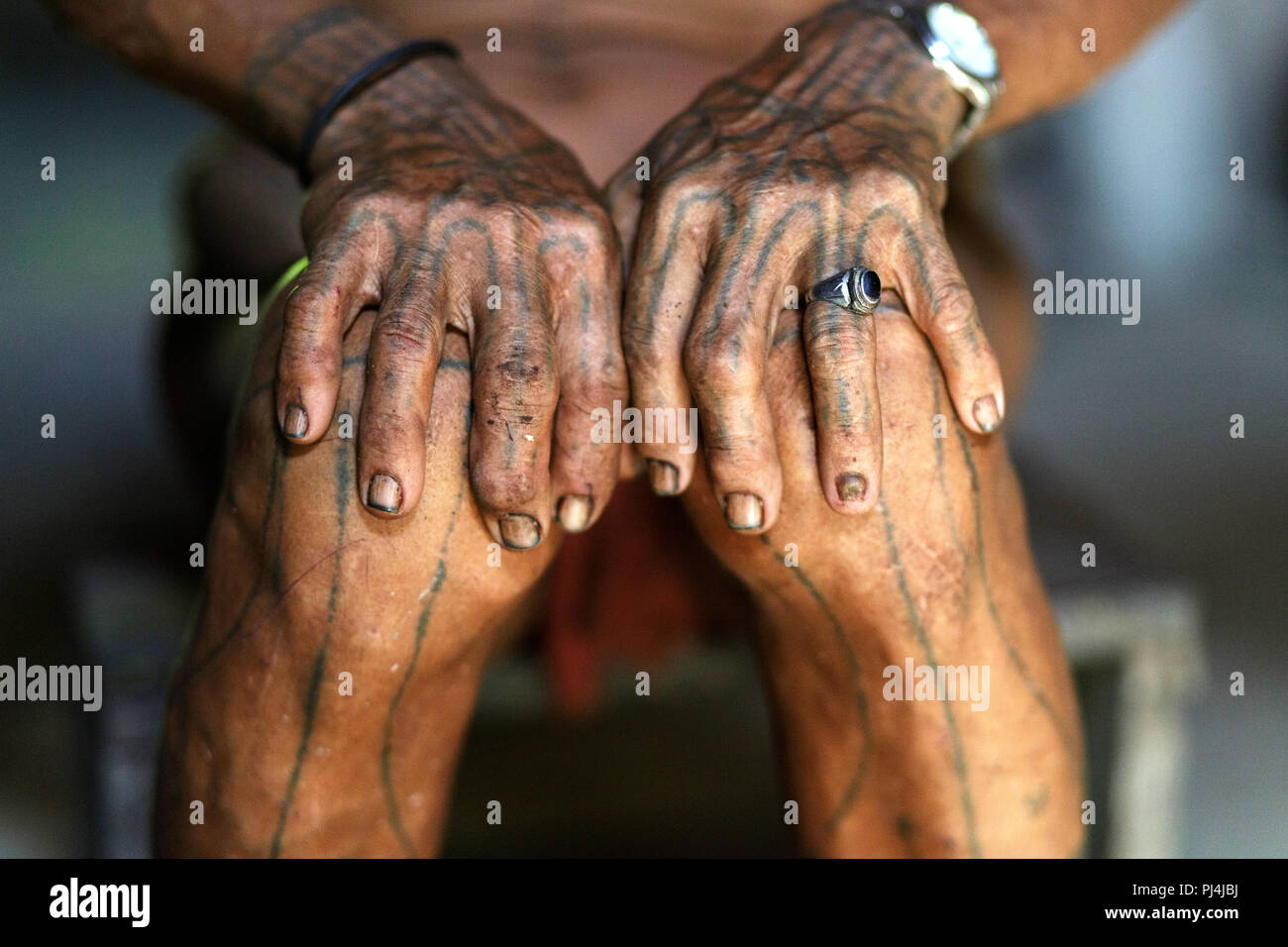 Tatooed hands of an old shaman, Mentawai, Siberut, Sumatra, Indonesia - Stock Image