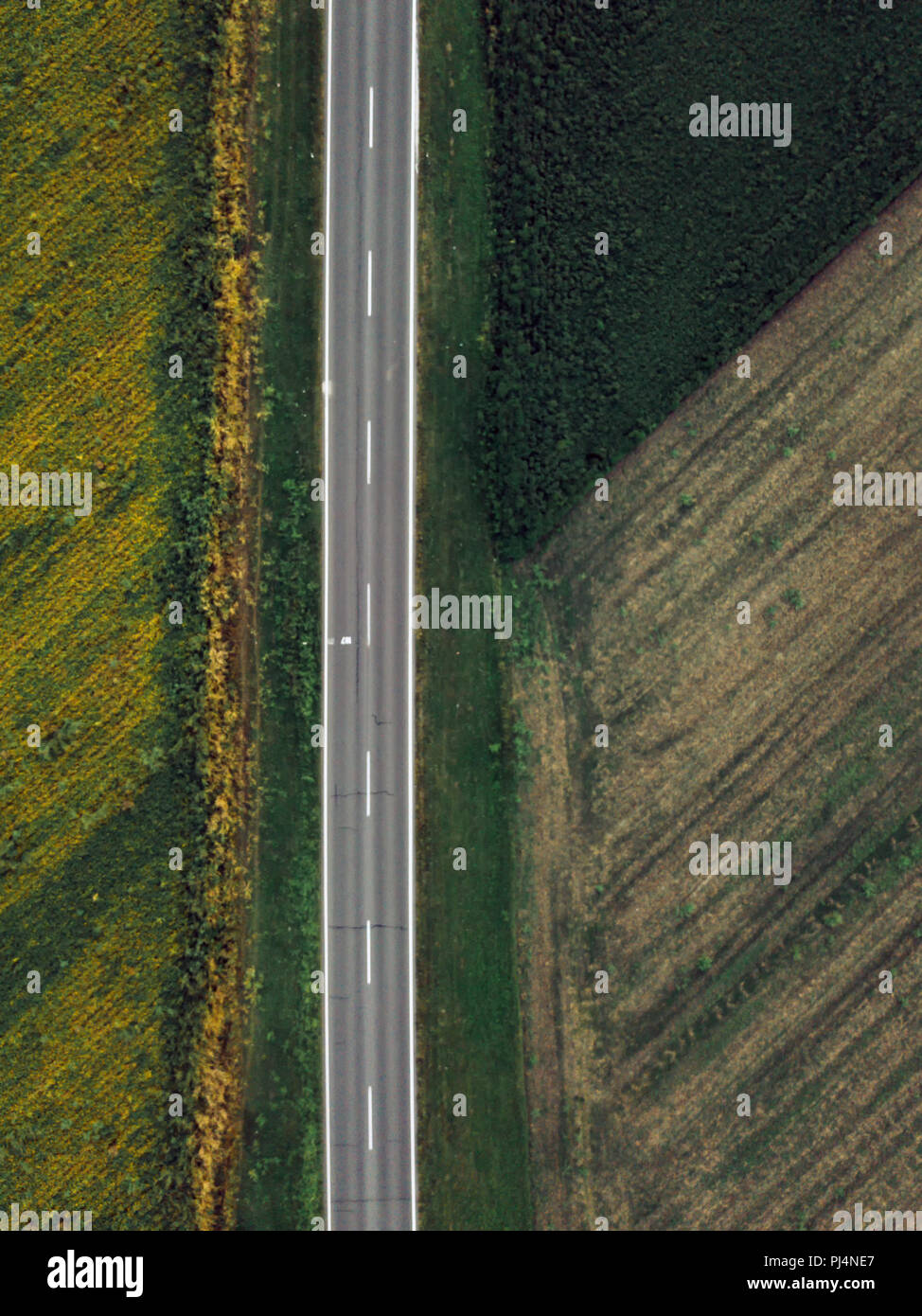 Drone photography of empty road through plain countryside landscape, aerial view of two lane roadway directly from above - Stock Image