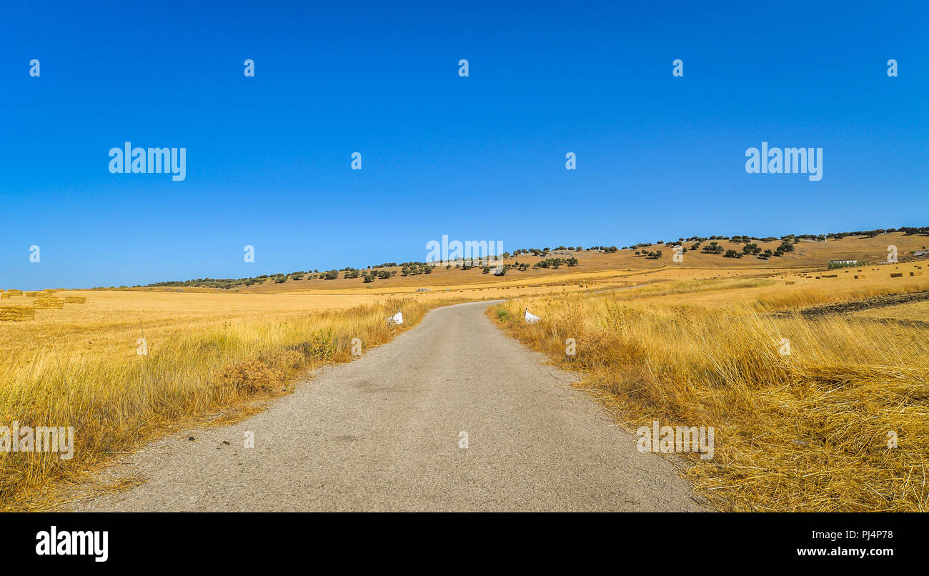 The landscape outside of Ronda in southern Spain - Stock Image