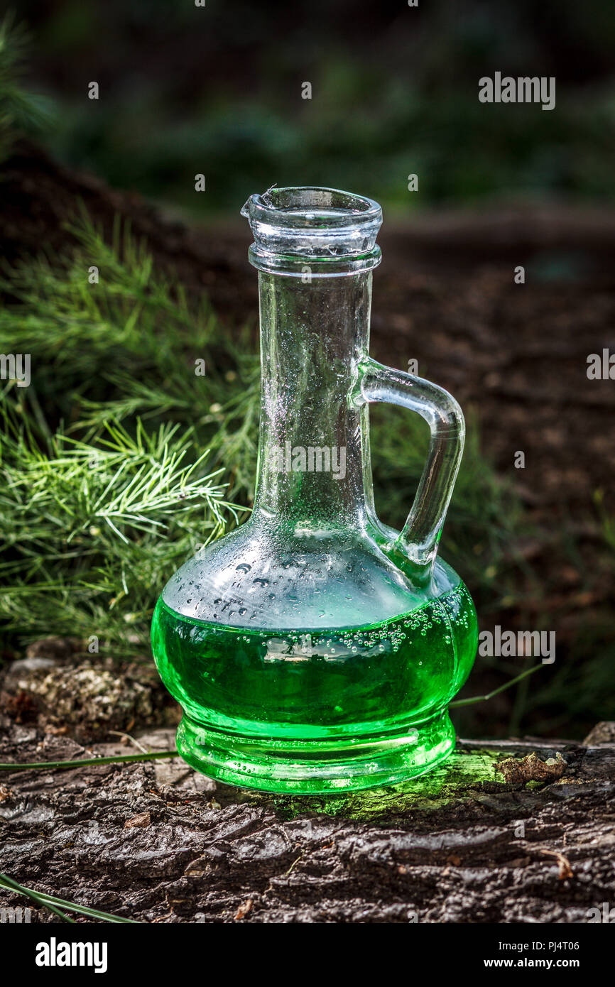 Glass vessel with green herbal potion in the woods on the trunk of a fallen tree. Herbal and magic elixir. Homeopathic medicine concept - Stock Image