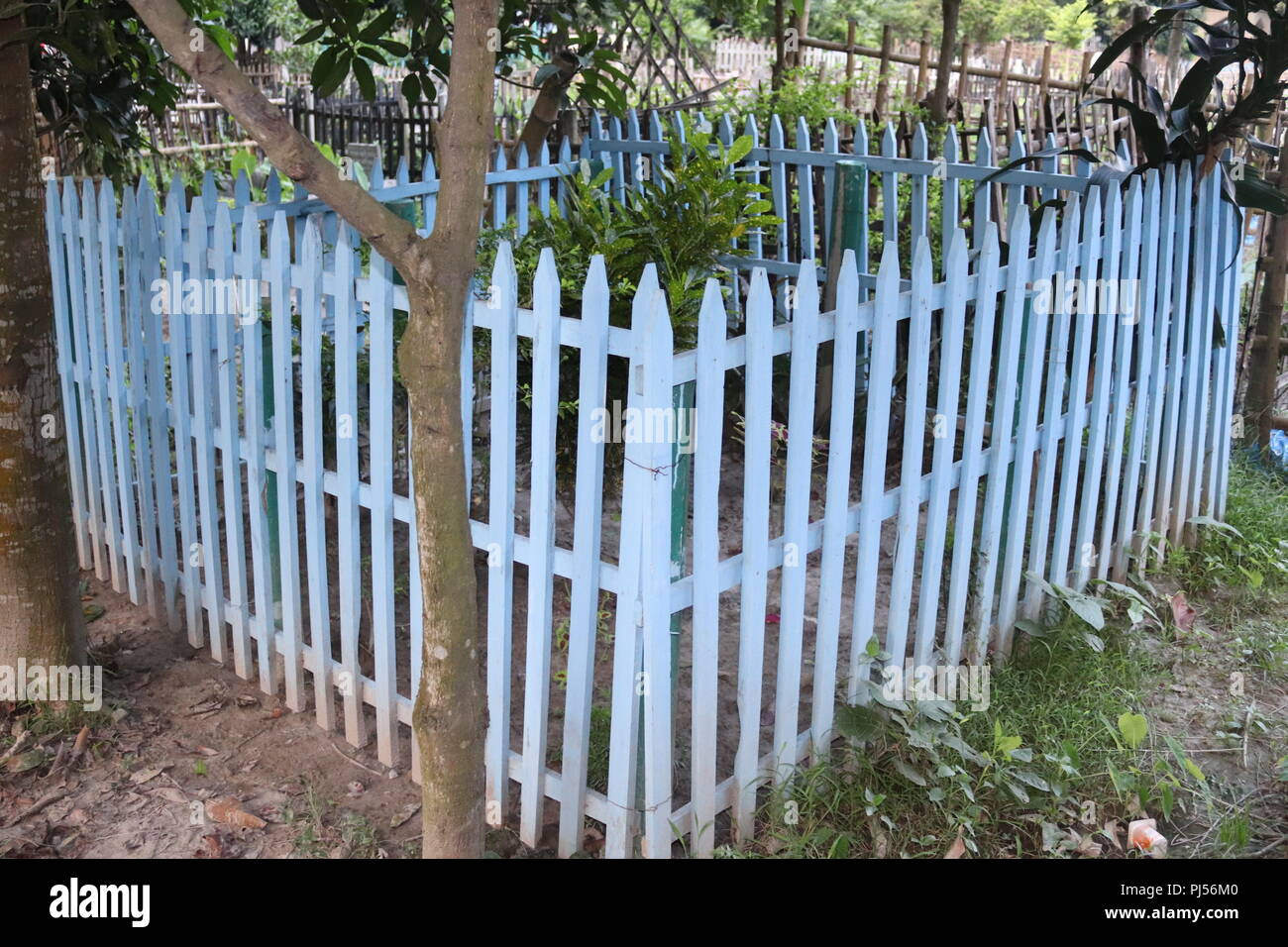 Bamboo Fencing Stock Photos & Bamboo Fencing Stock Images - Alamy