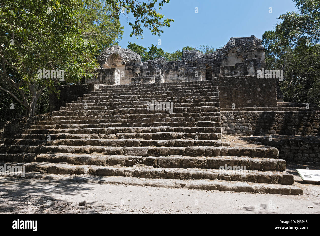 The ruins of the ancient Mayan city of calakmul, campeche, Mexico. - Stock Image