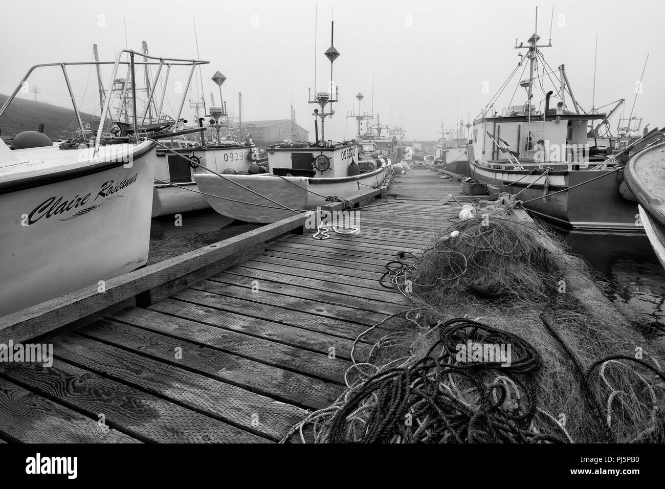 Fishing boats in foggy harbor in Saint Bride's, Newfoundland and Labrador - Stock Image