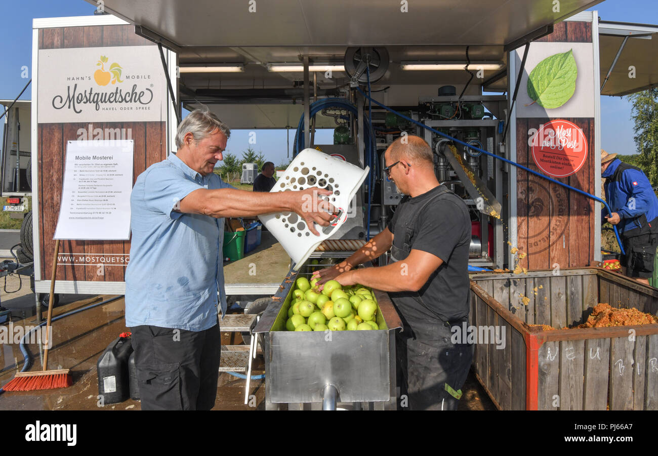 04.09.2018, Brandenburg, Frankfurt (Oder): Roland Hinrich (l) brings about 200 kilograms to Mario Flach's mobile cider crusher from Berlin. The mobile apple juice press tours Berlin and Brandenburg. From a quantity of 100 kilograms of apples, everyone can have their own apple juice pressed here. After pressing, the juice is heated to 80 degrees Celsius and filled into three or five litre tubular bags. From 100 kilograms you can squeeze about 50 to 60 litres of juice. Photo: Patrick Pleul/dpa-Zentralbild/ZB - Stock Image