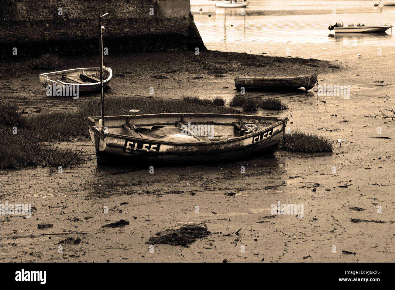 Rowing boats trapped at low tide on the River Exe, Devon, surrounded by mud, awaiting the returning tide. - Stock Image