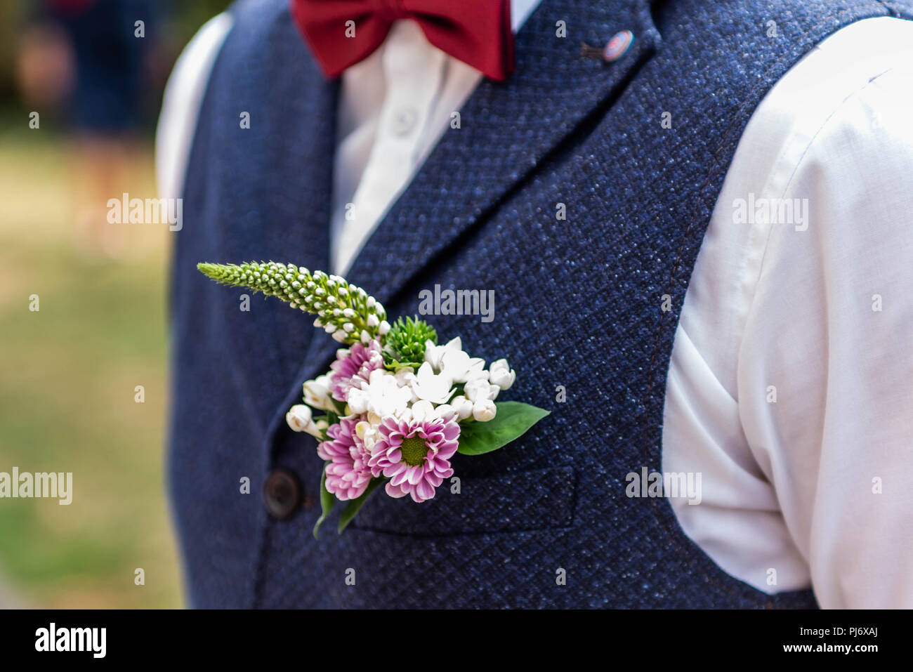 0e842c8c4df0 Pink flowers boutonniere flower groom wedding coat with vest Stock ...