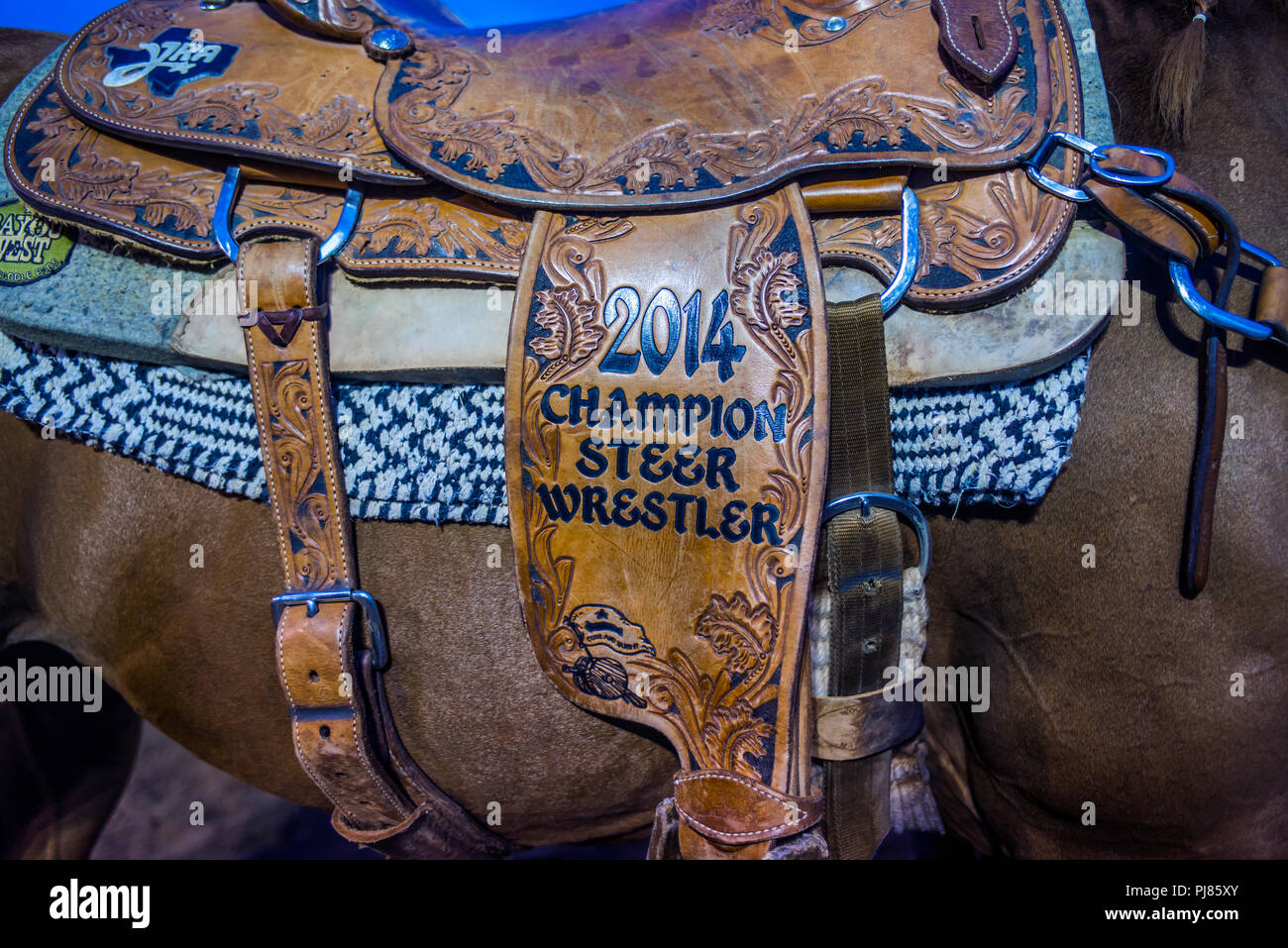 Rodeo in Wimberley, Texas USA. Labor Day 2018. - Stock Image