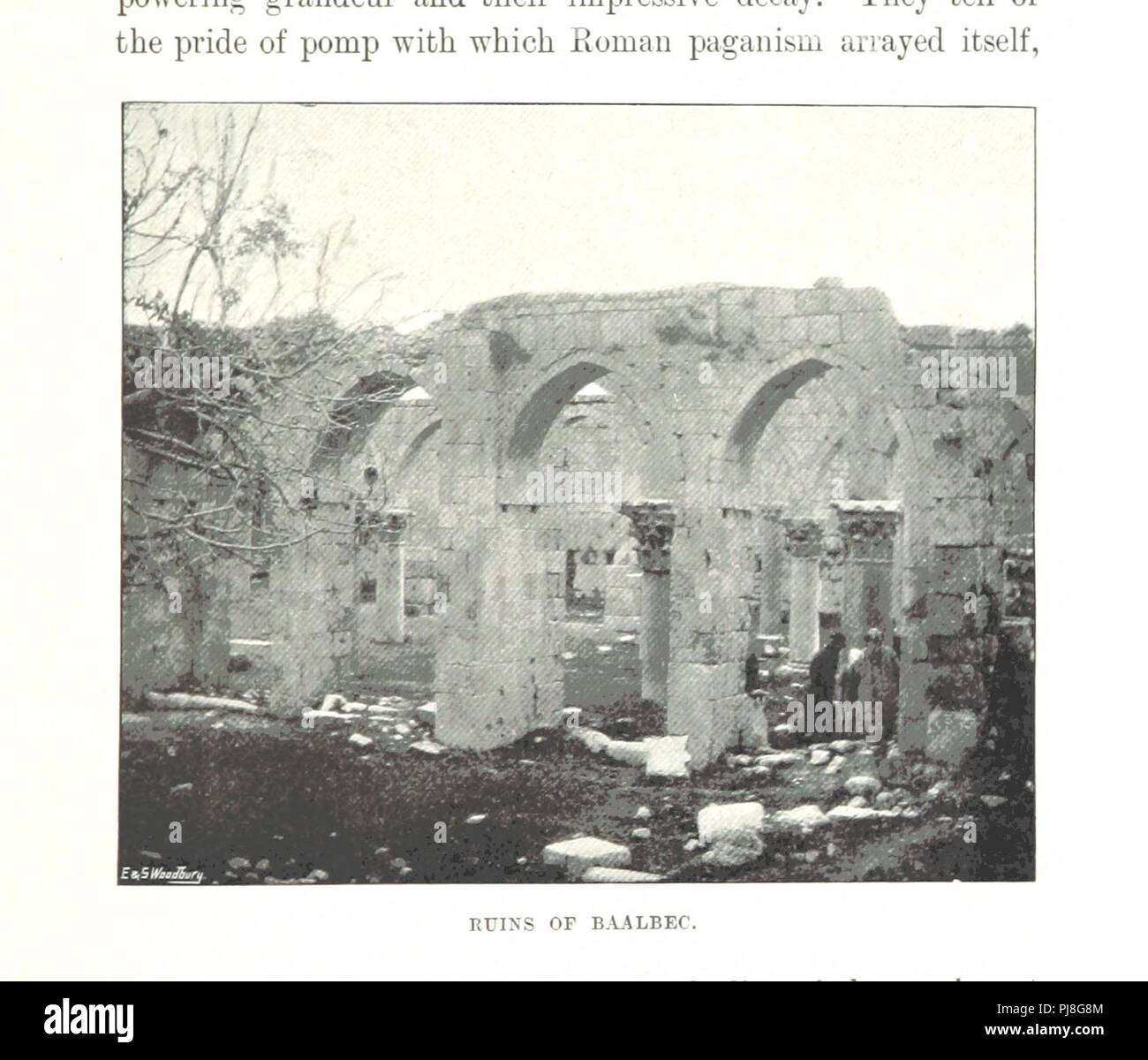 Image From Page 253 Of My Tour In Palestine And Syria
