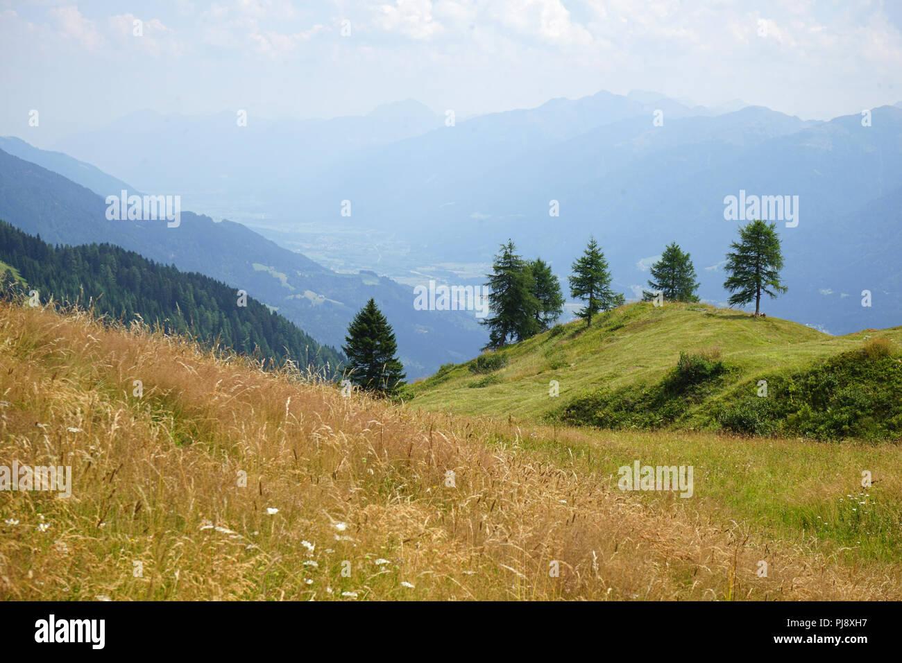 Mussen oder Auf der Mussen, Naturschutzgebiet, Almgebiet, Bergwiesen, Lesachtal, Kärnten, Österreich Stock Photo