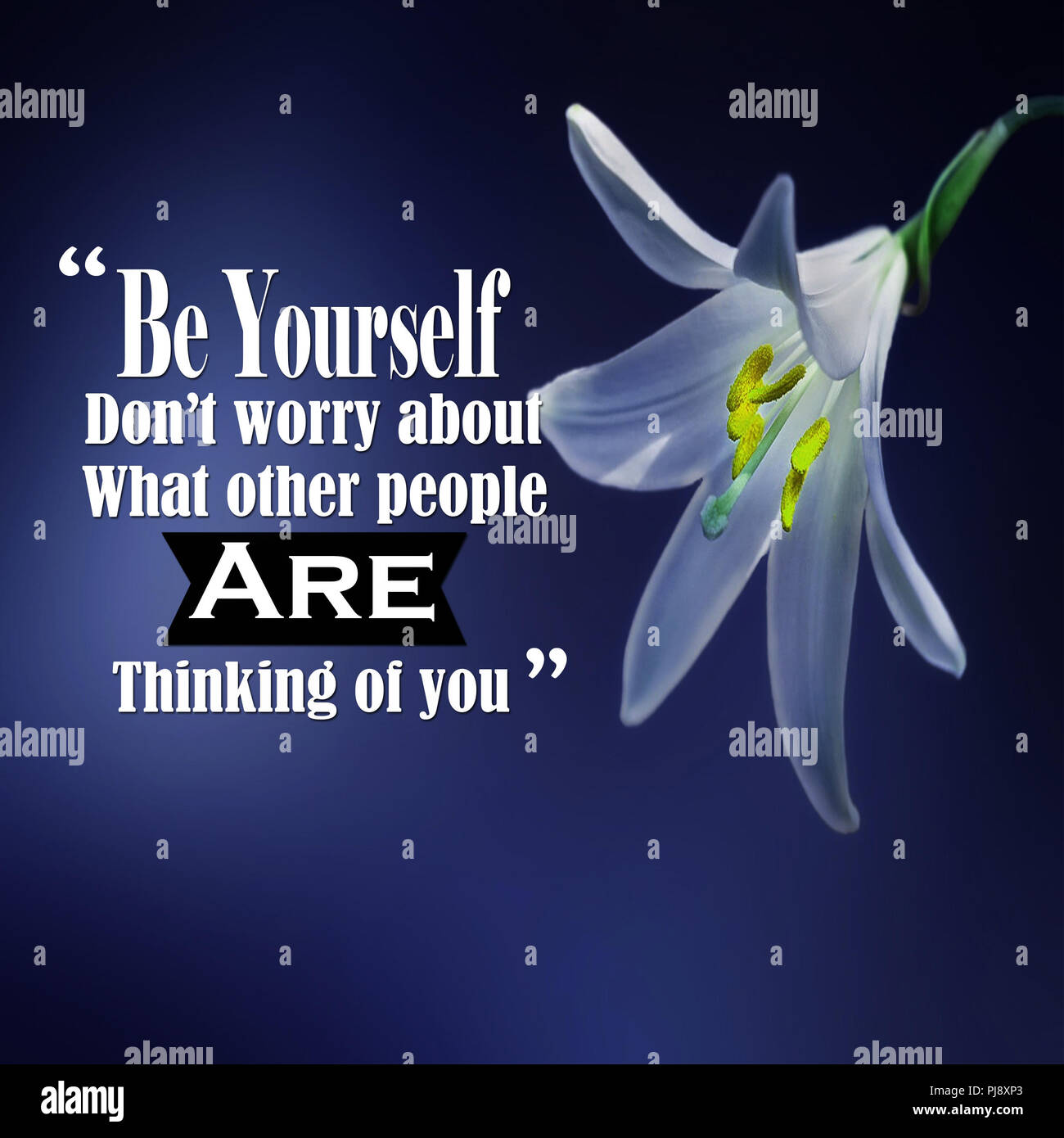Inspirational Quotes Be Yourself Dont Worry About What Other