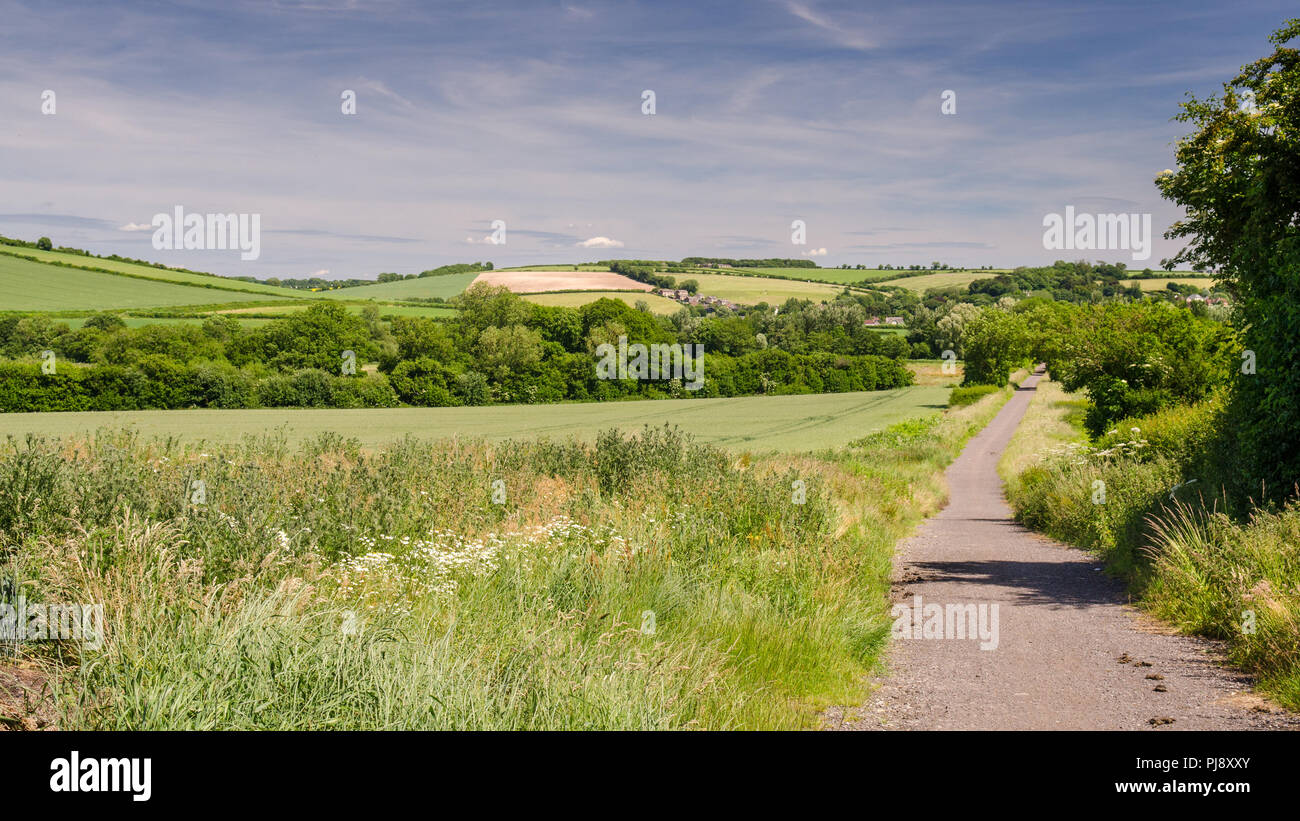 The North Dorset Trailway cycleway and footpath follows the route of the disused Somerset and Dorset Railway through farmland fields in the Blackmore  - Stock Image