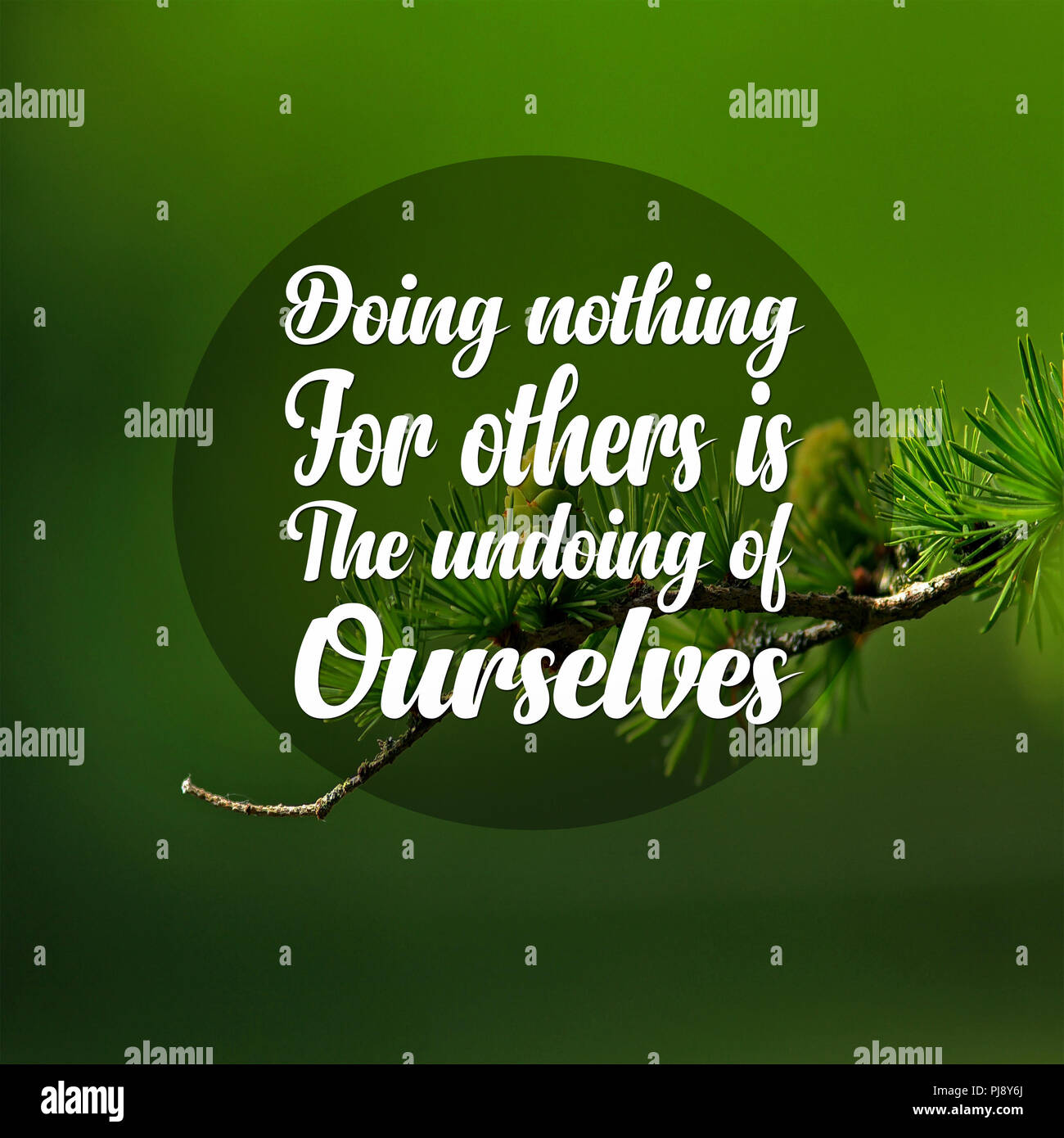 Inspirational Quotes Doing Nothing For Others Is The Undoing Of