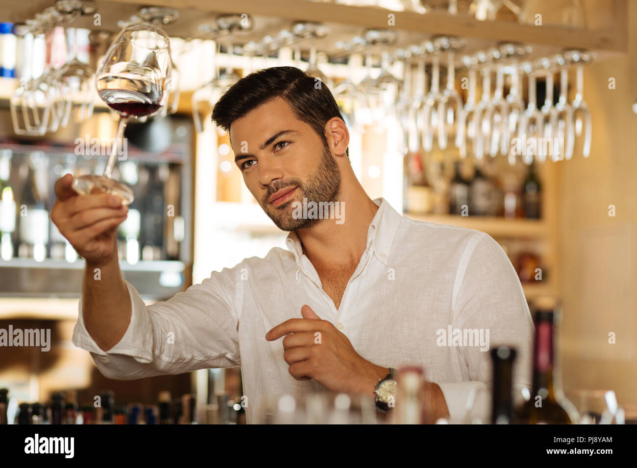 Delighted positive man looking at the glass with wine - Stock Image