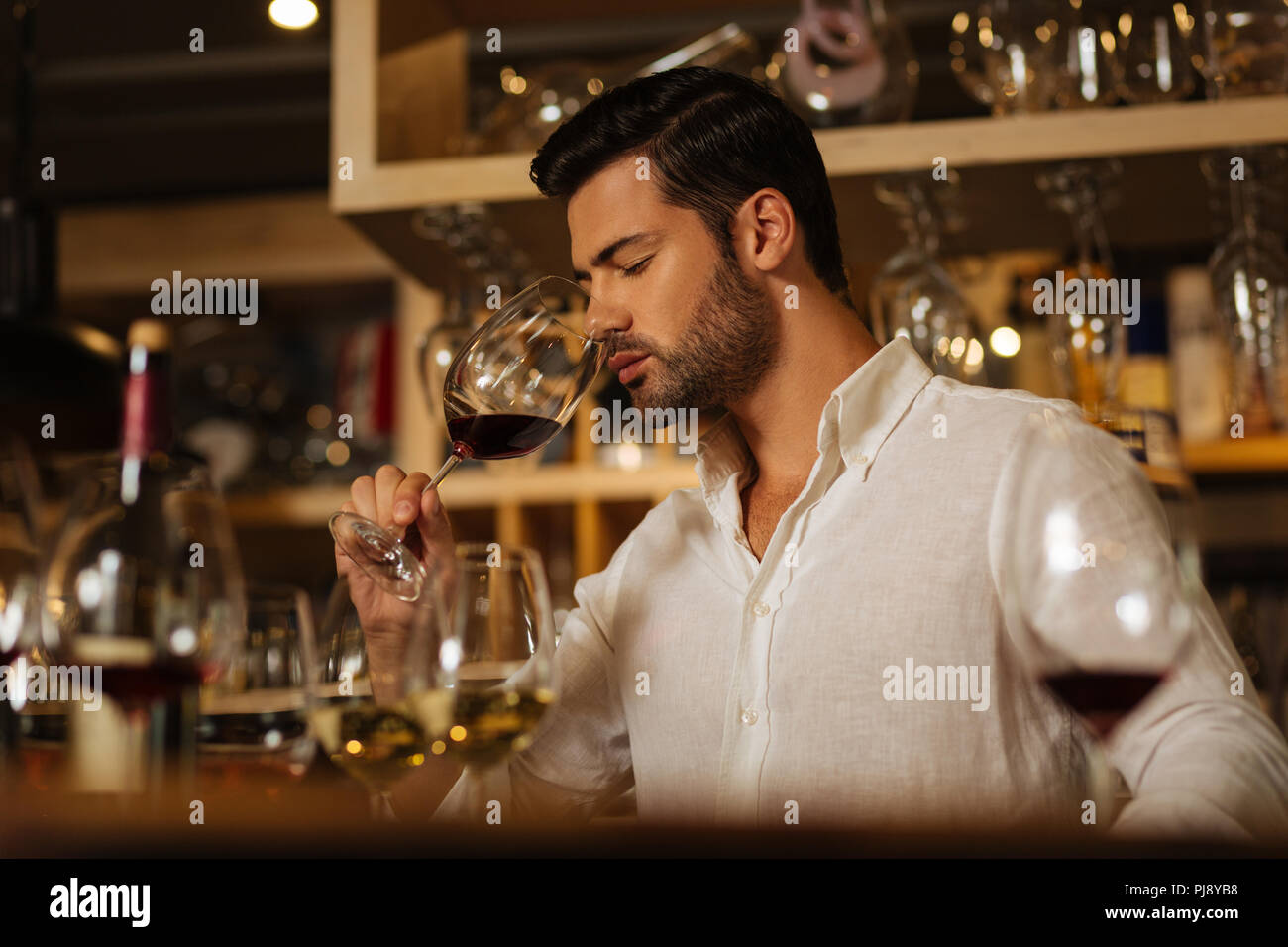Smart attractive man working as a sommelier - Stock Image