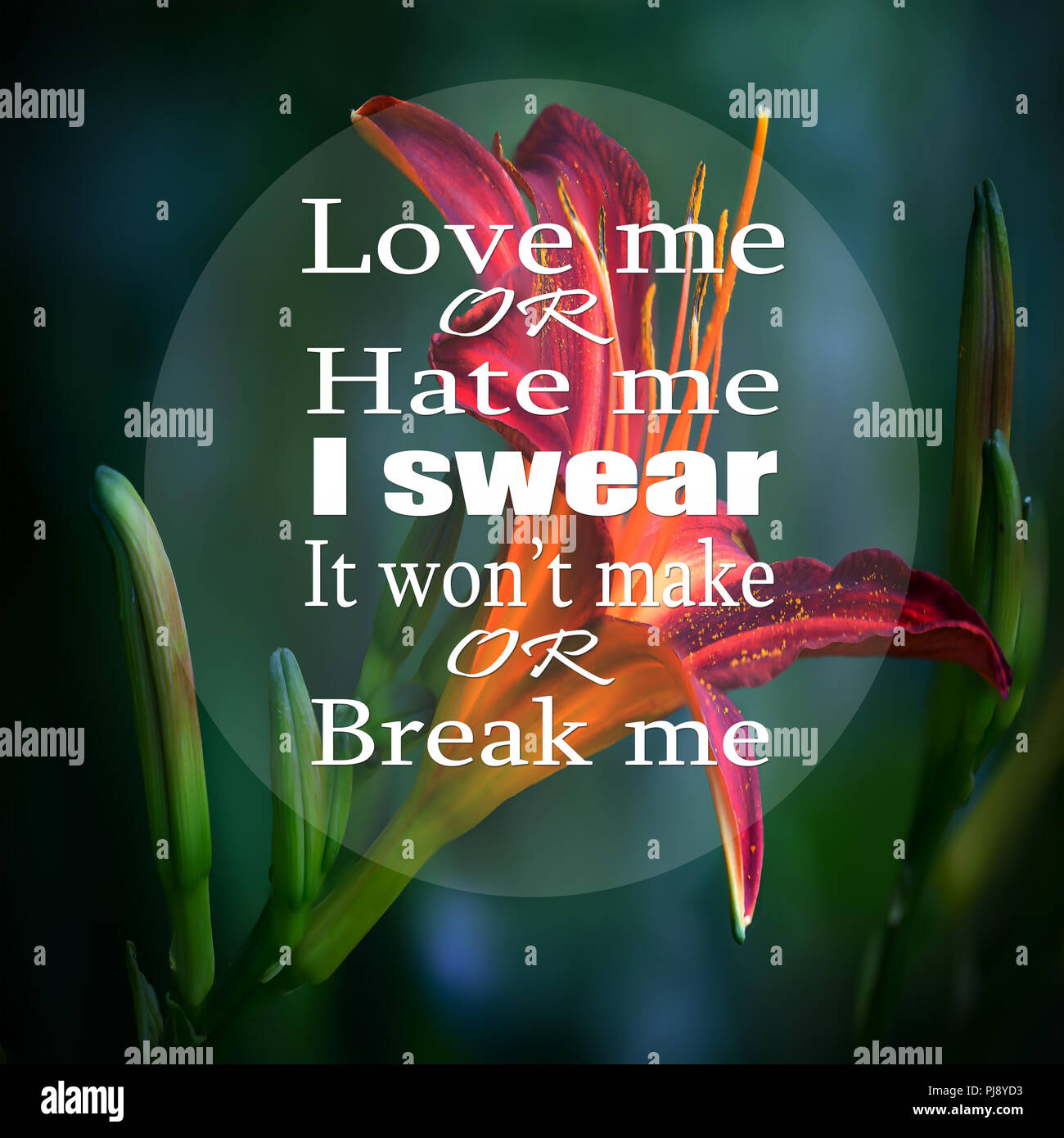Inspirational Quotes Love Me Or Hate Me I Swear It Wont Make Or