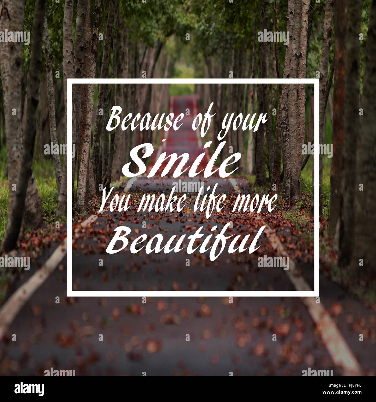 Life Quotes Because Of Your Smile You Make Your Life More Beautiful