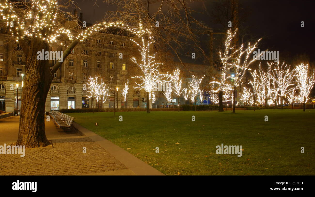 Nicy night cityscape of green square with park, treeses illuminated with Christmas lights in center of Budapest, Hungary. - Stock Image