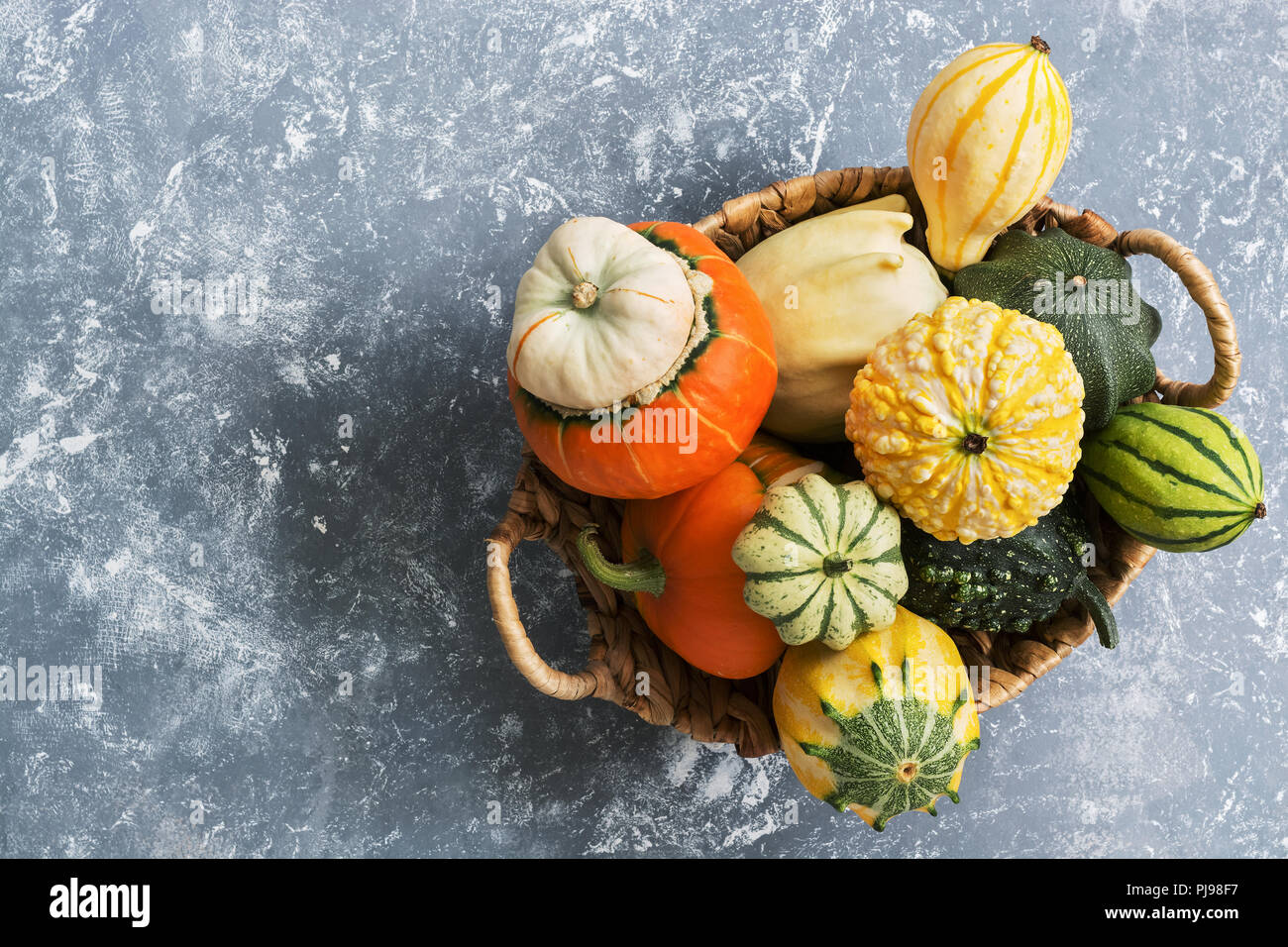 Collection of various colorful pumpkins in a basket on a gray background. Top view, copy space. Stock Photo