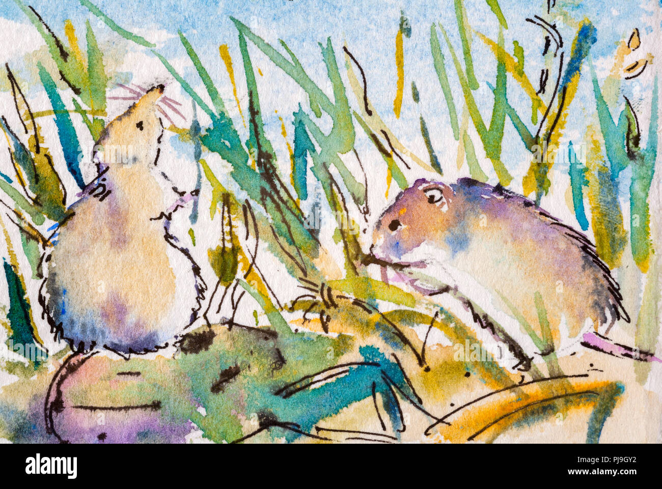 Details of watercolour painting studies for a wildlife