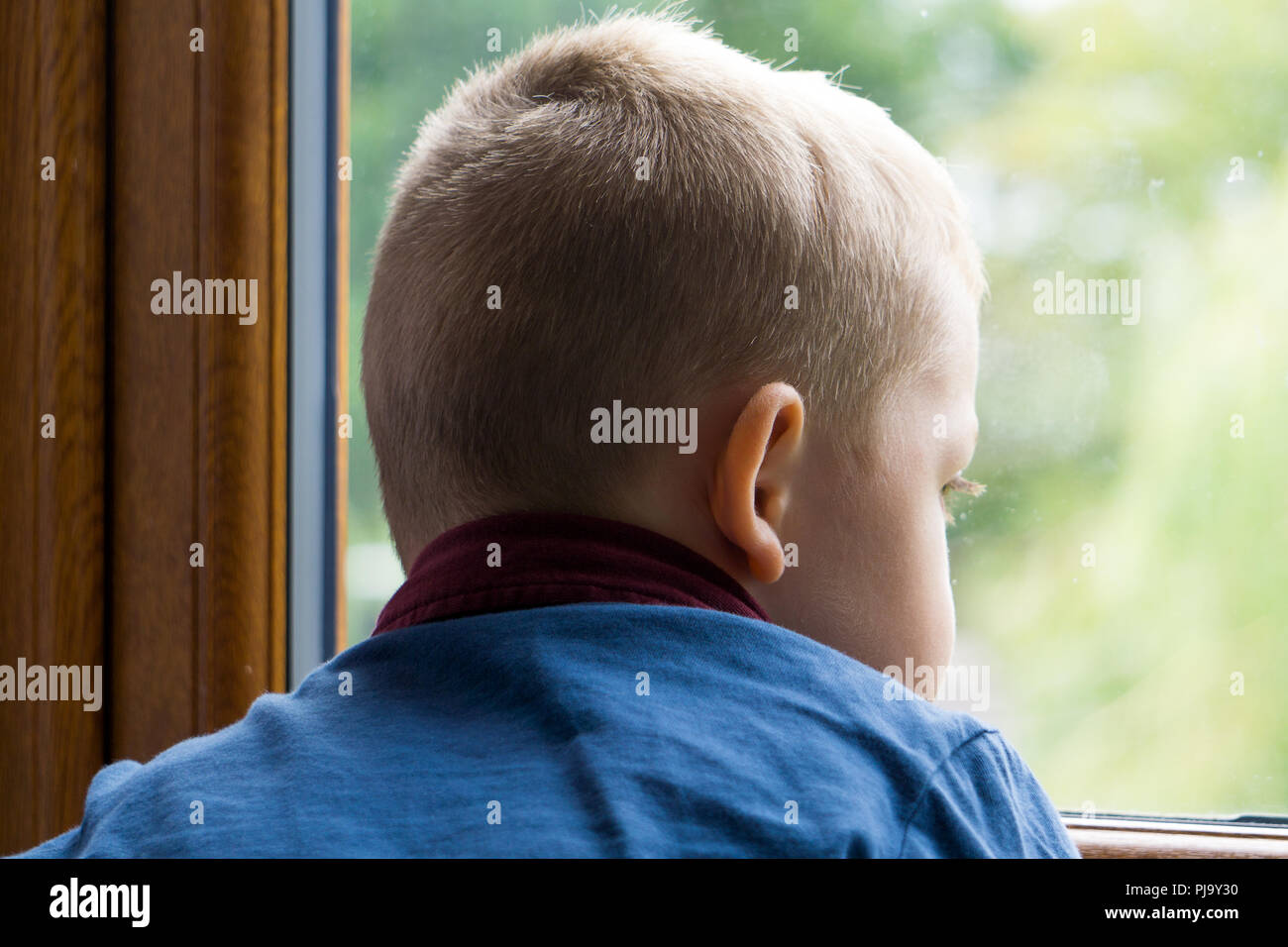 Small boy looking out of a window onto a garden - Stock Image